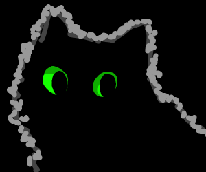 Black cat with big green eyes