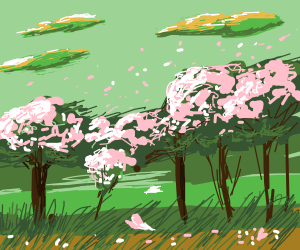 Cherry Blossom caught in the Wind