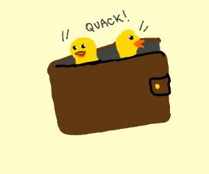 ducks in a wallet
