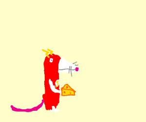 Flash the rat (superhero)