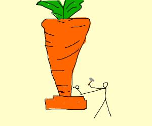 Carrot Sculptor