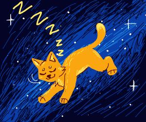 Sleepy space cat