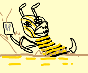 Bee digging into Quicksand