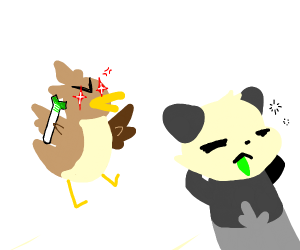 pancham not paying attention to farfetchd