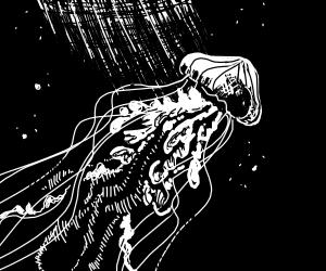 black and white jellyfish