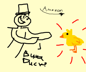 Buy a duck from Amazon!