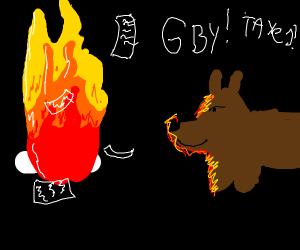 dog burning taxes
