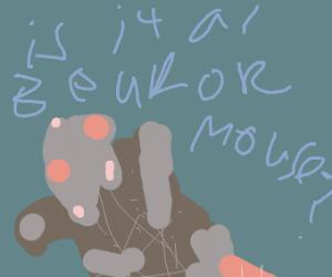 Bear mouse creature