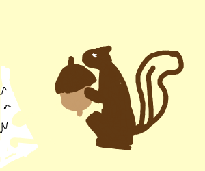 Squirrel eating acorn next to torn paper
