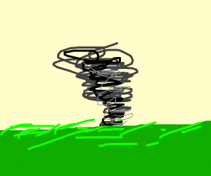 tornado in a meadow