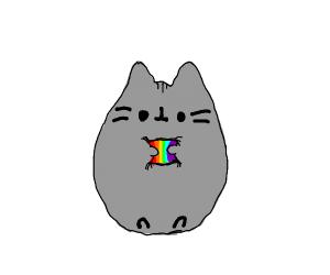 Pusheen The Cat Hugs A Rainbow Pillow