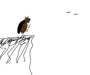 suicidal cockroach