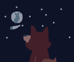 Red fox looking at shooting star