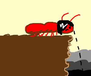Emo ant doesn't have high hopes