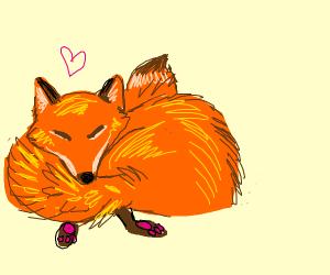 Content fox