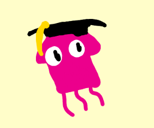 Squid graduating