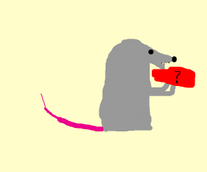 A rat munches on mystery meat. Ew!