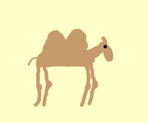 Short-necked camel