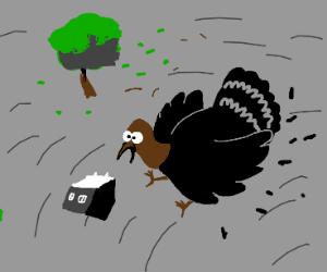Turkey in a tornado