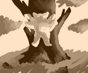 Muscular bi-limbed cat descends tree