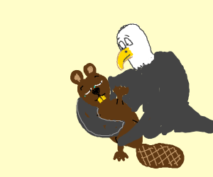 eagle braces beaver in its arms as he perish