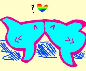 Gay Shark?
