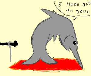 swordfish does gymnastics