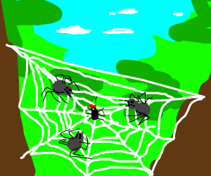 Spider lunch party