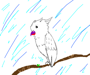 White parrot with top purple bottom red lips.