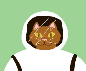 A kitten wearing an astronaut suit