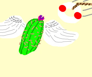 flying cactus needs help