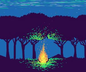 A campfire in a dark forest