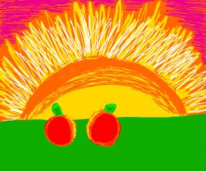 Cherries at the beach watching sunset
