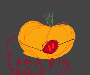 A pig not a pumpkin