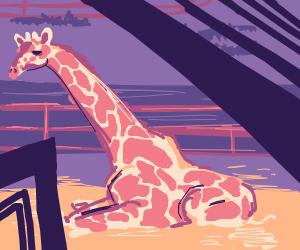 Giraffe in it's sexiest pose