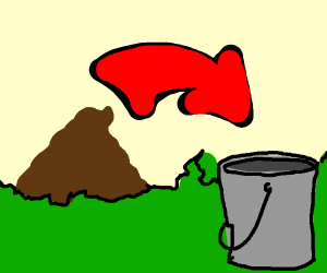 Place poop in bucket