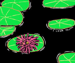 "Water lily gets a text saying ""I love you""."