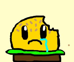 Burger Meets its Demise Muahahahahahaha