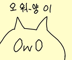 OwO cat