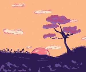 Sunset behind a safari