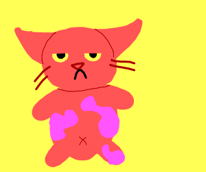 Cat walked in pink paint