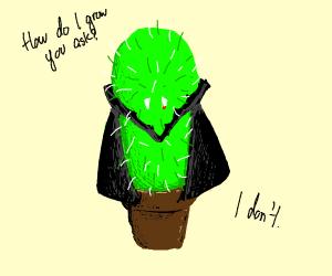 vampire cactus