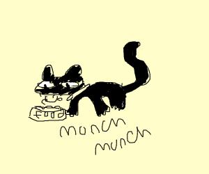 Cat enjoying cat food