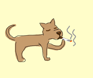 Pet Cigarette