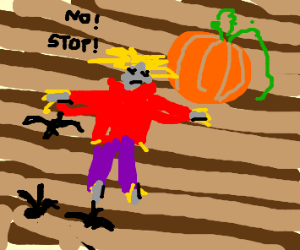 A scarecrow protecting a pumpkin from crows