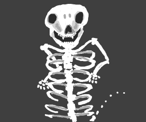 skeleton with more ribs than normal