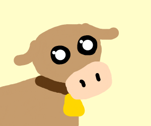 Cute Calf with a Bell