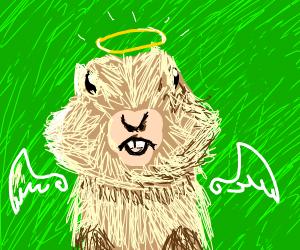 angel gopher
