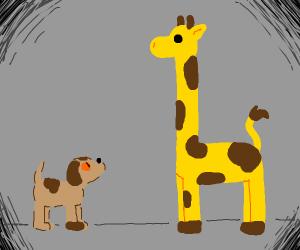 dog with a giraffe