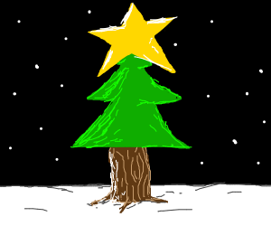 Christmas Tree with a biiiiiiiiig star